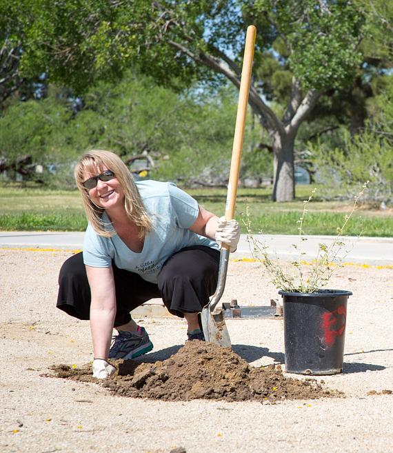A team member from The Venetian and The Palazzo plants a shrub for Earth Day