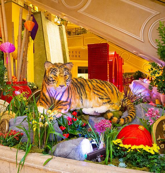 A tiger, the secret friend of the pig, sits in the east flower bed in the Waterfall Atrium at The Venetian Resort Las Vegas