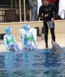 """O"" cast members swim with the resident dolphins"