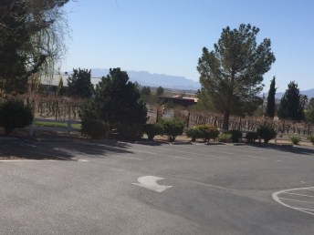 So Nevada Wine Excursion13