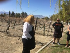 So Nevada Wine Excursion22