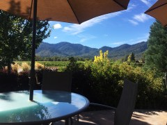 At a Southern Oregon Winery - Beauteous!