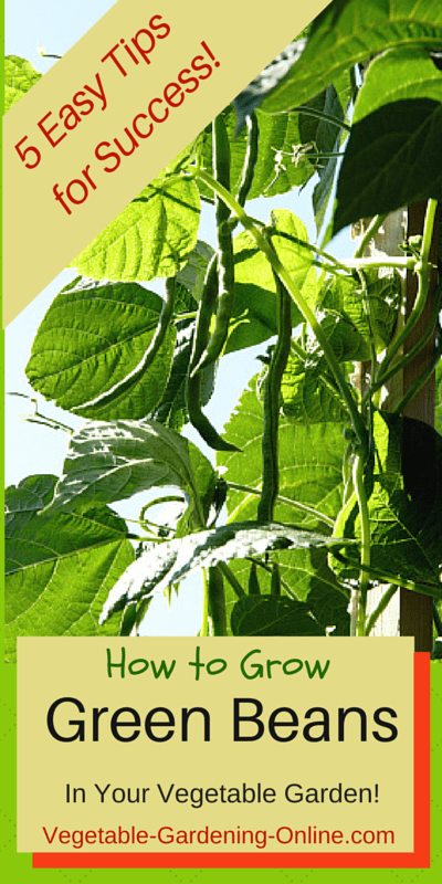 Design Your Own Garden Free