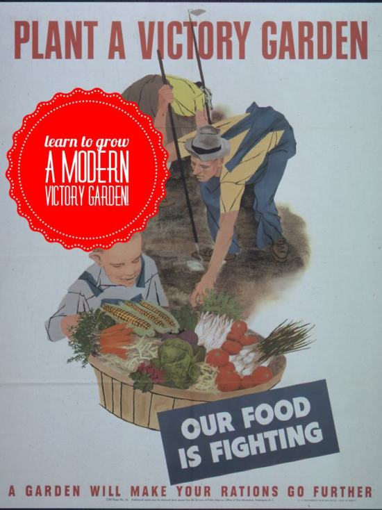 Learn how to grow a modern victory garden