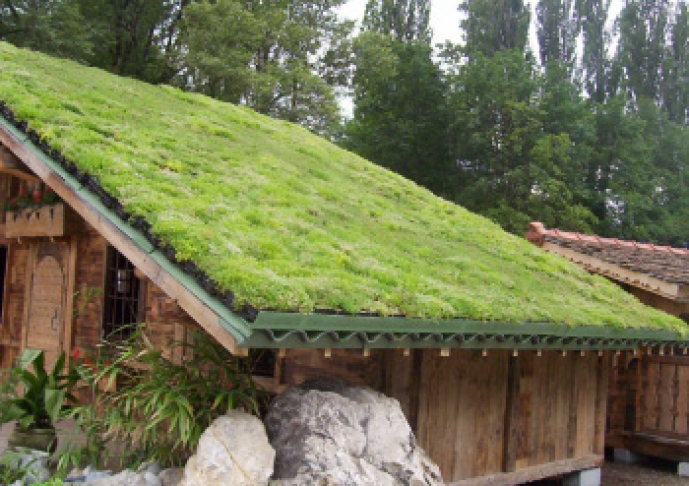 Innovative Green Roof Solutions And Storm Water Management