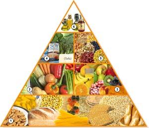 Nutrición y Dieta Vegana