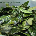 How to preserve and store curry leaves/kadi patta ?