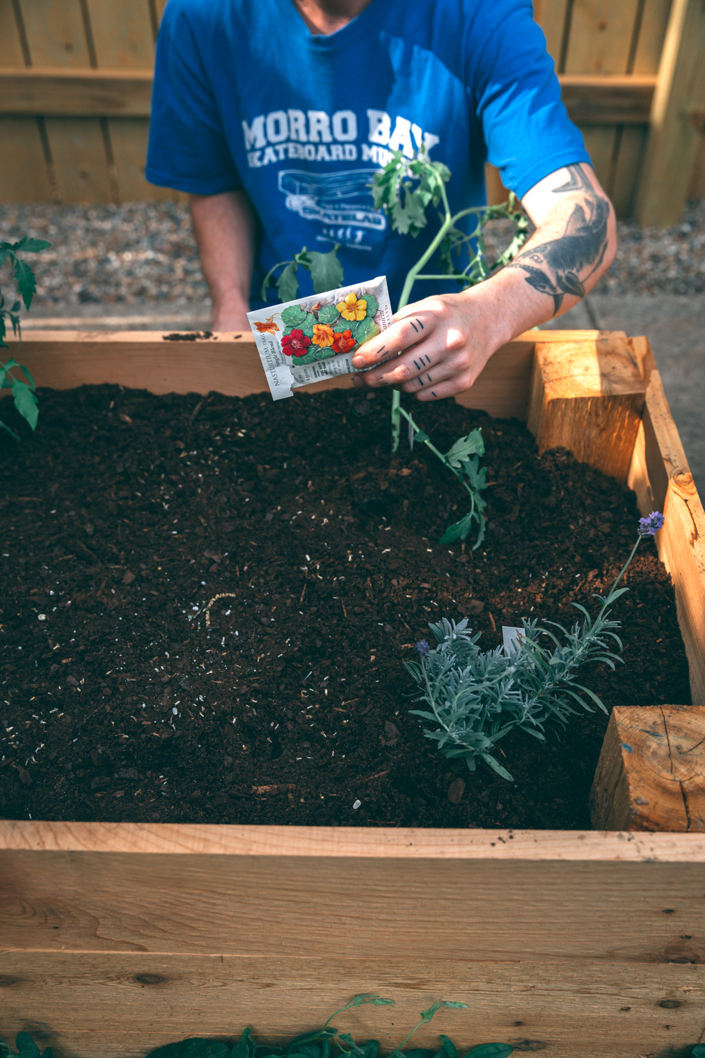 My Tips & Tricks For Planting an Edible Garden