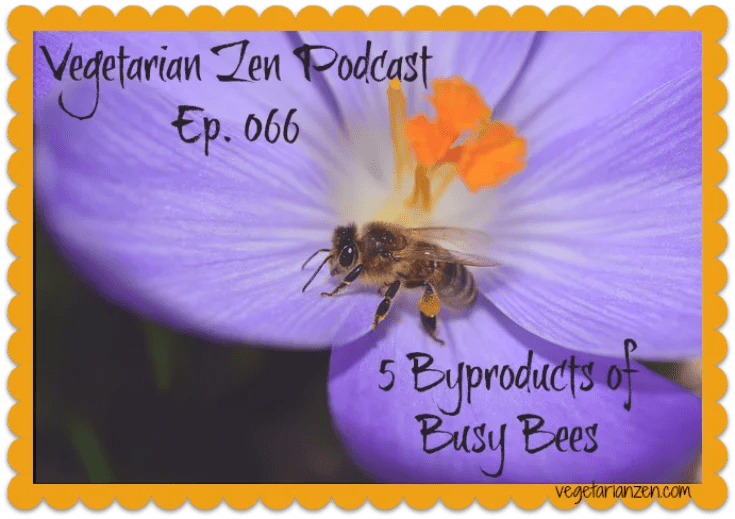 VZ066 - 5 Byproducts of Busy Bees http://www.vegetarianzen.com