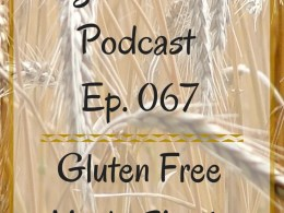 VZ067 - Gluten Free Made Simple http://www.vegetarianzen.com