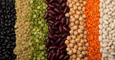 Les-proteines-vegetales-font-elles-maigrir1