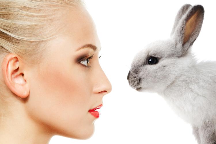 makeup_bunny2