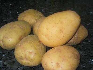 propiedades de la patata papa con piel