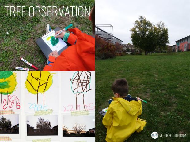 TreeObservation