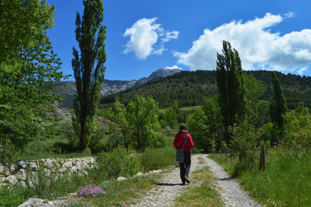 Walking in the Steps of Europe's First Vegans – The Cathars