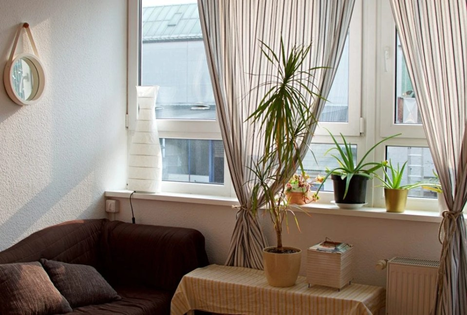 The Best Vegan Accommodation in Hamburg