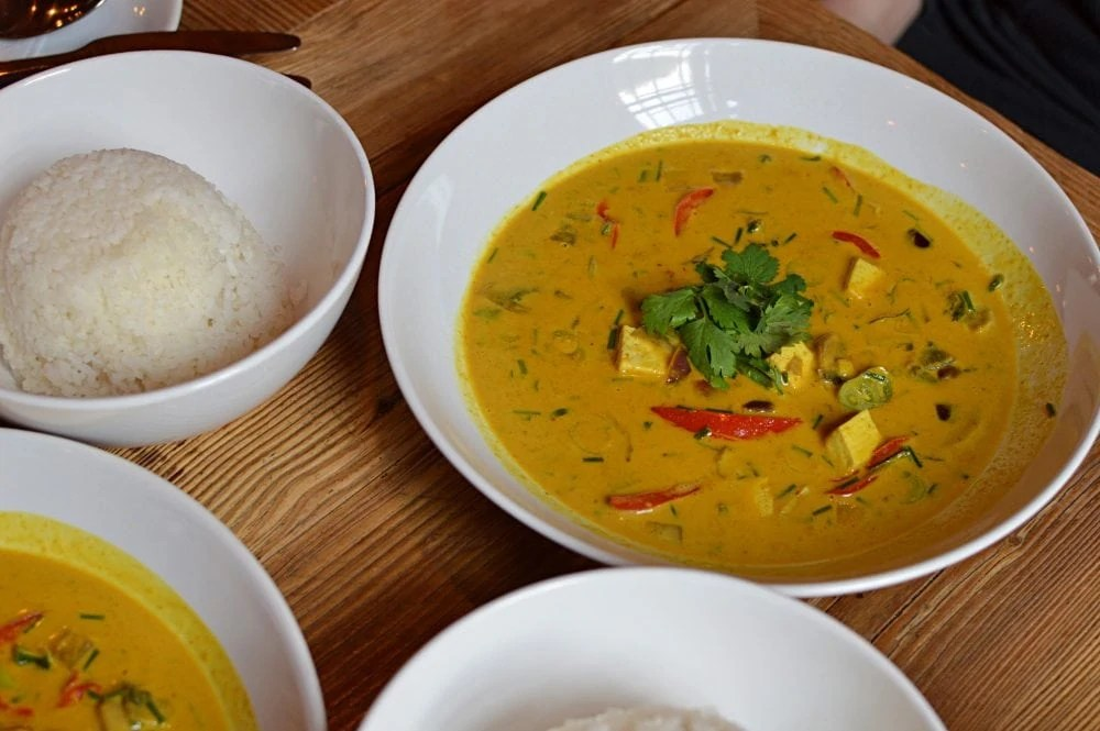 Satsang Vegan Curry in Prague