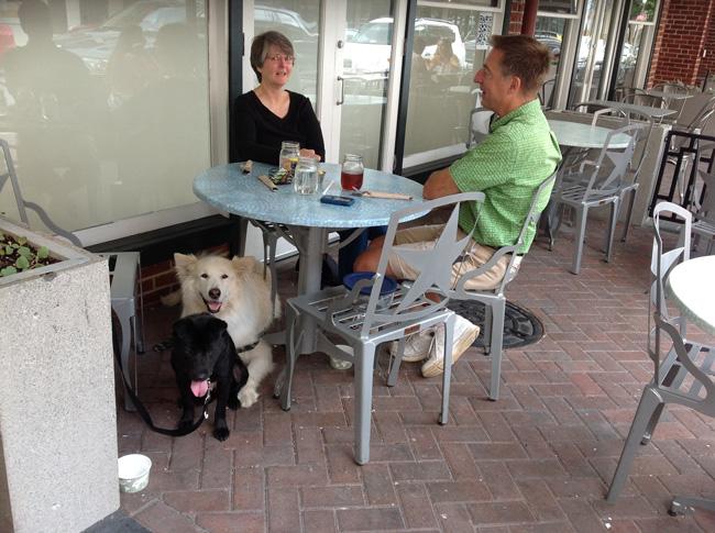 Outdoors Pet-Friendly Environment