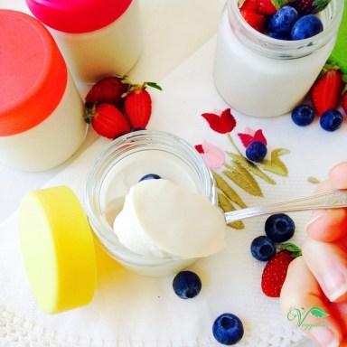 Iogurte de Soja Caseiro6
