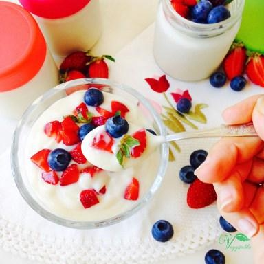 Iogurte de Soja Caseiro7