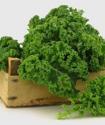 kale in CSA box