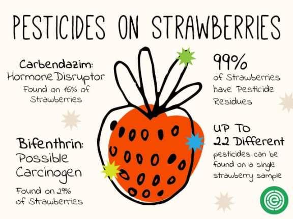 pesticides in strawberries - EWG