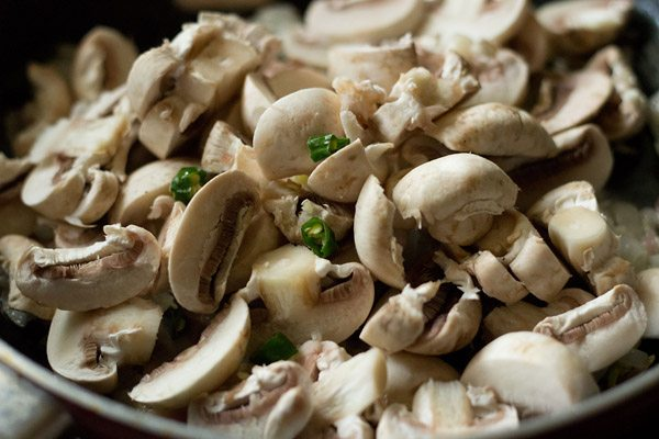 mushroom vindaloo recipe