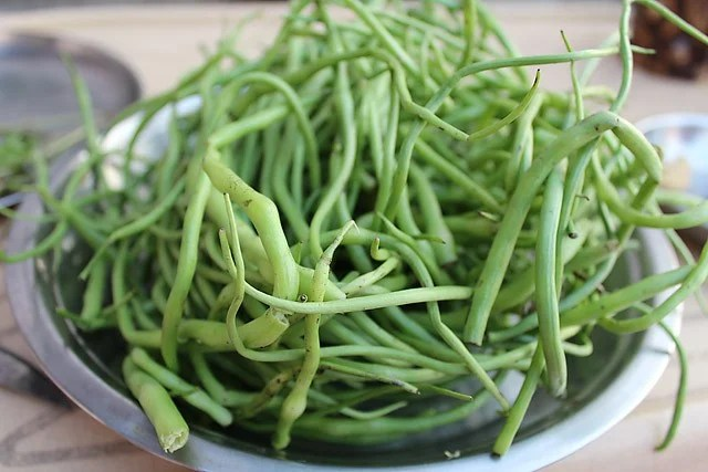 moongre, radish pods