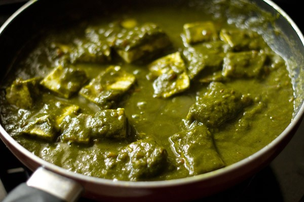 paneer cubes mixed with the palak gravy or spinach sauce