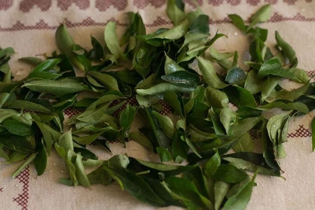 curry leaves for curry leaves chutney recipe