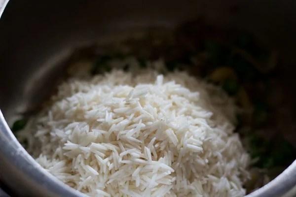 adding rice for coconut milk rice