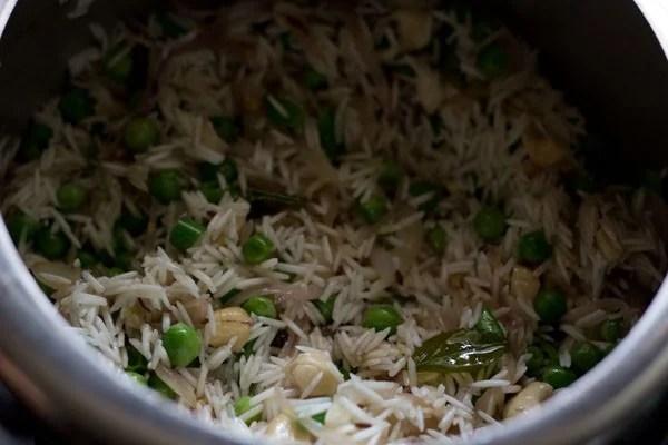 making coconut milk rice recipe