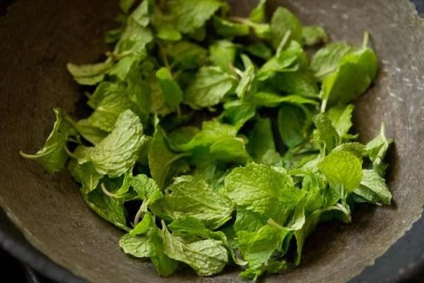mint for pudina paratha recipe