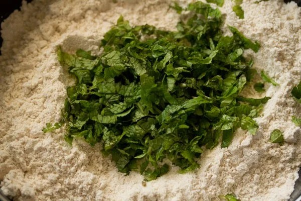 mint for making pudina paratha recipe