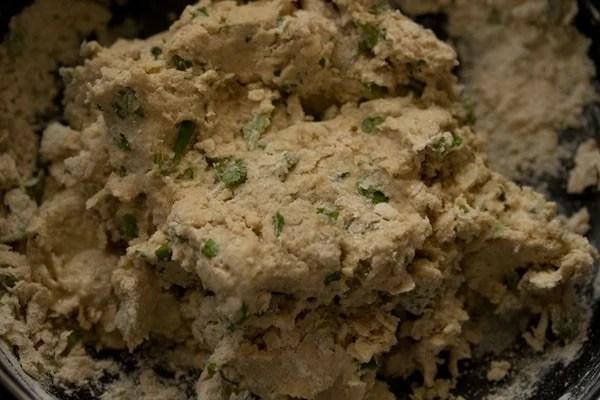 dough for making pudina paratha recipe