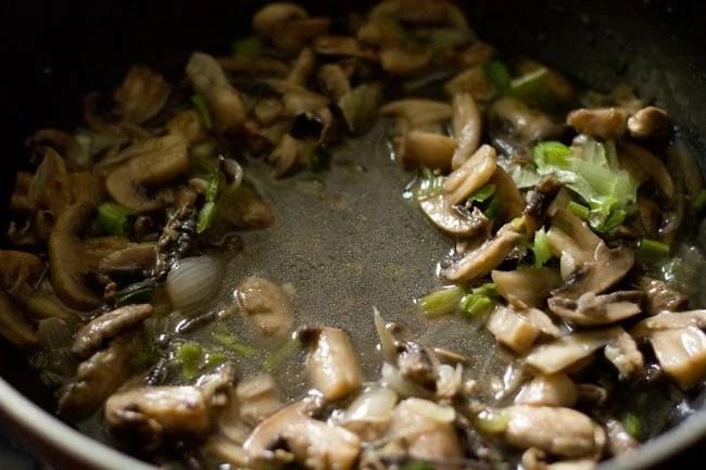 mushrooms for mushroom soup recipe