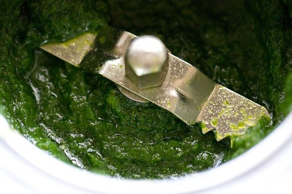 green chutney recipe for sandwich