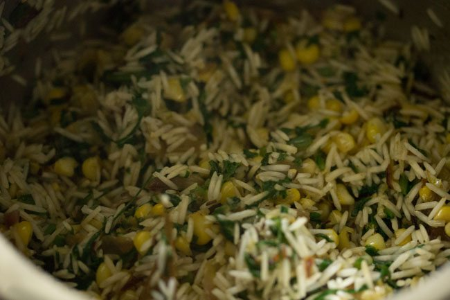rice for making makai palak pulao recipe