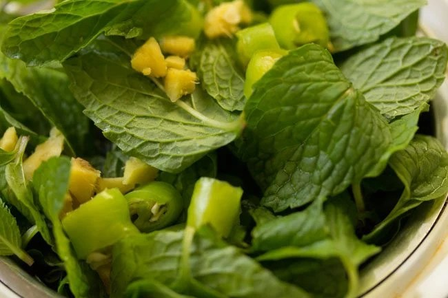 mint to make mint chutney recipe