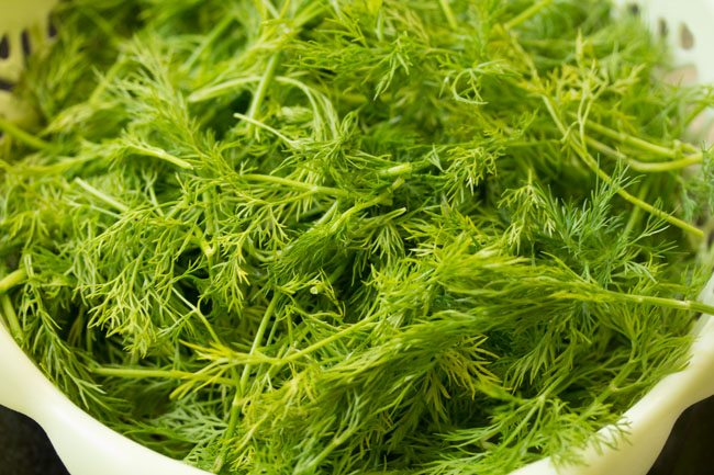 dill leaves to make suva moong dal sabzi recipe