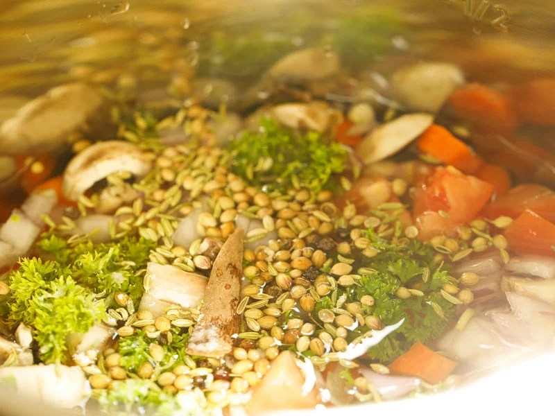 all vegetable broth ingredients and water added to the bowl of the instant pot