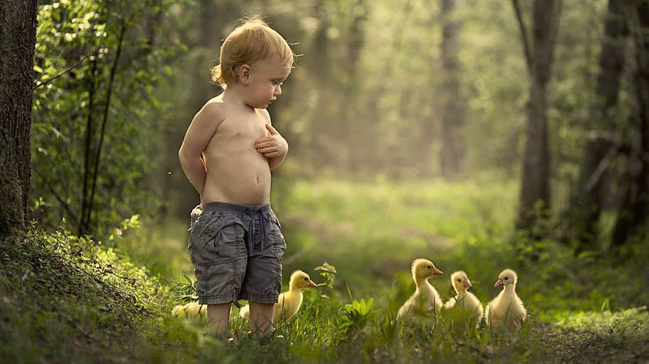 فطرة الاطفال حب الحيوانات