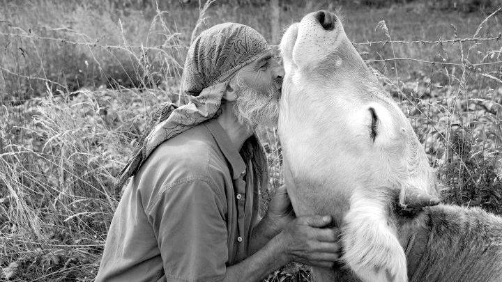 الوعي الحقيقي عندما نوسع دائرة تعاطفنا لتشمل جميع المخلوقات