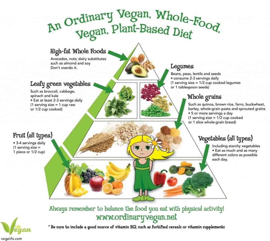 الهرم الغذائي النباتي للأطفال