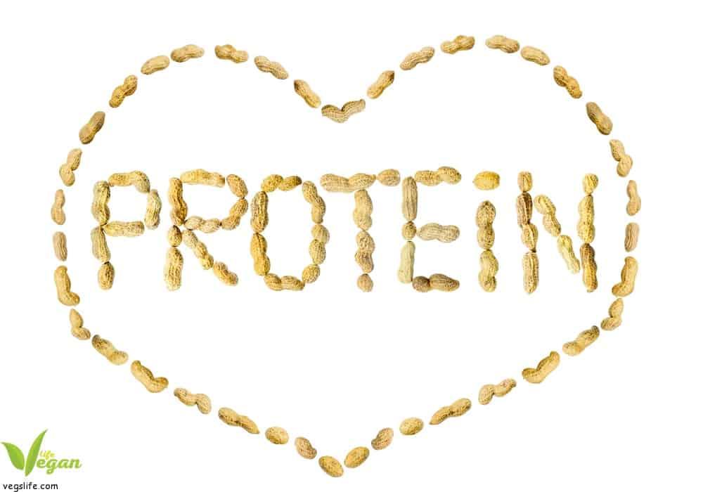 كل ما تحتاج معرفته عن البروتين