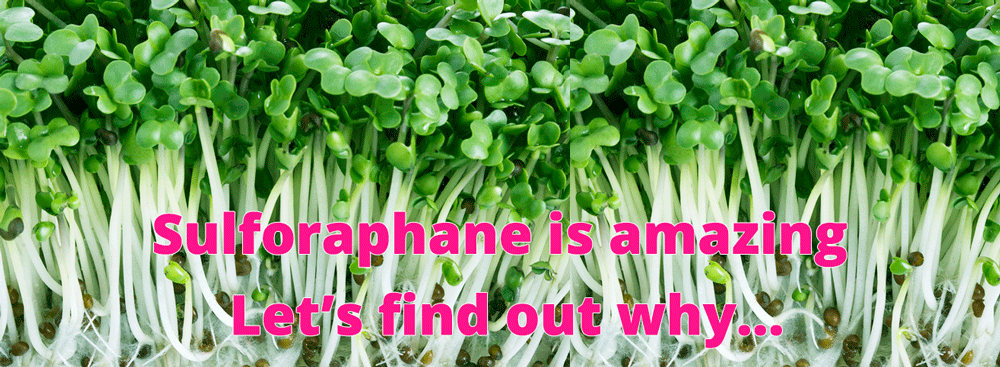 Sulforaphane is Amazing