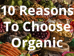 10 reasons to choose organic
