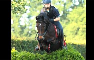 Kavel 23: 10 jarige bereden C pony merrie
