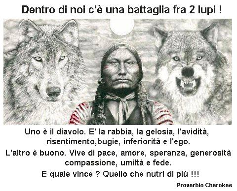 due-lupi-proverbio-cherokee