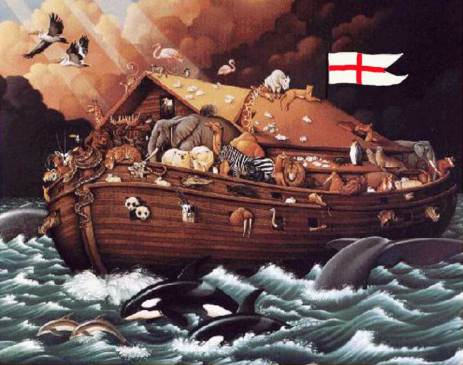 arca.856